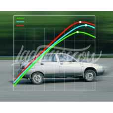 Fuel Injection custom mapping and chip-tuning